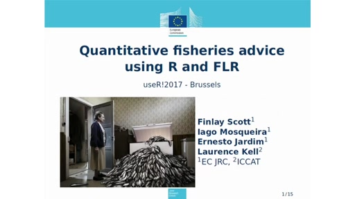 Quantitative fisheries advice using R and FLR