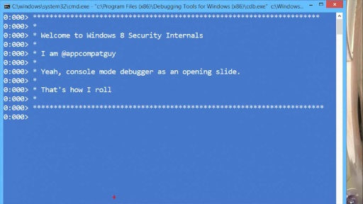 Windows 8.1 Security Internals