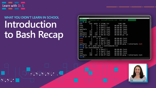 Introduction to Bash Recap | Learn with Dr G
