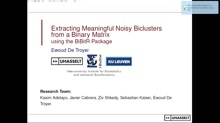 Extracting Meaningful Noisy Biclusters from a Binary Big-Data Matrix using the BiBitR R Package