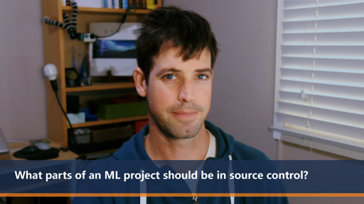 What parts of an ML project should be in source control? | One Dev Question