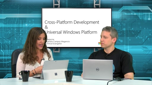Programa 1 – Desarrollo multiplataforma y Cross-Platform Development