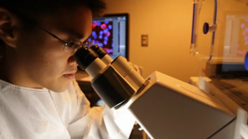FaST-LMM and Windows Azure Put Genetics Research on Faster Track