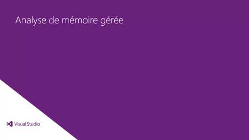 Visual Studio 2013 Ultimate: Analyse de mémoire gérée