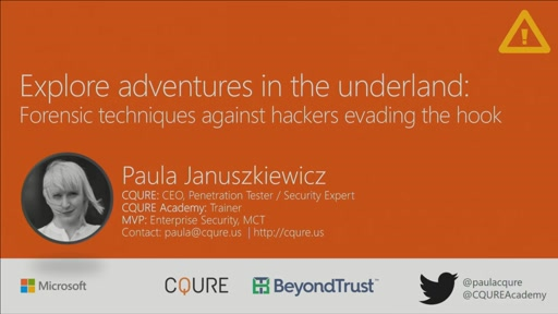 Explore adventures in the underland: forensic techniques against hackers evading the hook