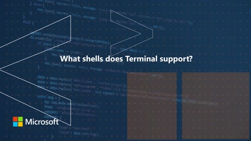 What shells does Terminal support | One Dev Question