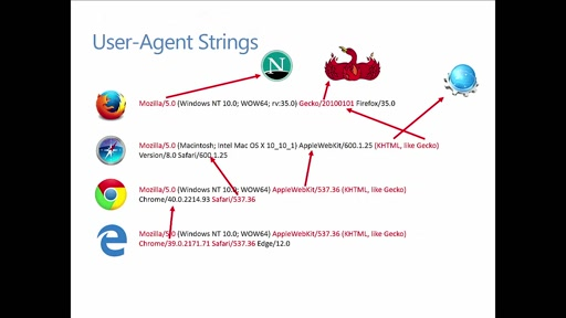 Web.Dev 8: Building Web Sites that Work Everywhere: Browser Detection and User Agent Sniffing
