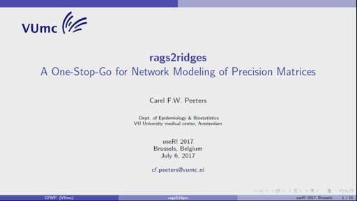 **rags2ridges**: A One-Stop-Go for Network Modeling of Precision Matrices