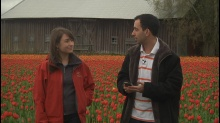 Countdown to TechEd Europe 2012: Tulips and TechExpo