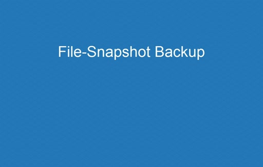 File-Snapshot Backups Demo