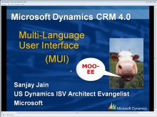 Microsoft Dynamics CRM 4.0 Multi-Language User Interface (MUI) with Sanjay Jain