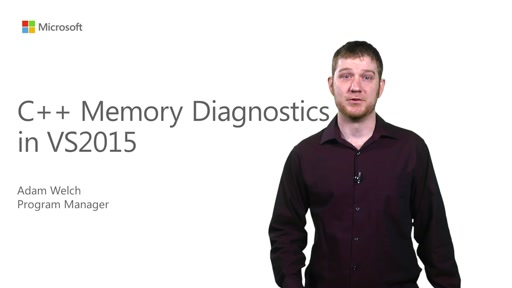 C++ - Native Memory Diagnostics