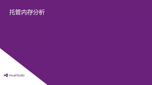 Visual Studio 2013 Ultimate: 托管内存分析