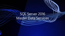 Master Data Services 2016