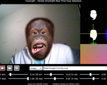FaceLight ��� Silverlight 4 Real-Time Face Detection