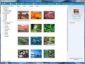 Organize Your Media with Photo Gallery & Spaces