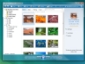 Windows Live Photo Gallery includes Flickr!
