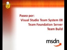 Paseo por: Visual Studio Team System 08, Team Foundation