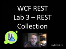 endpoint.tv - WCF REST Starter Kit Lab 3 - REST Collection Service