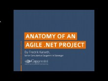 Anatomy of an Agile .NET project