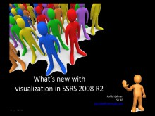 SSRS 2008 R2 Data Visualization Control