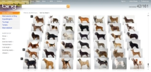 Bing Launches Visual Search