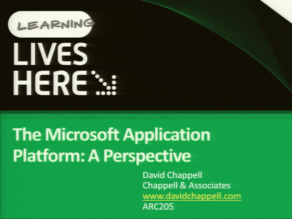 The Microsoft Application Platform: A Perspective