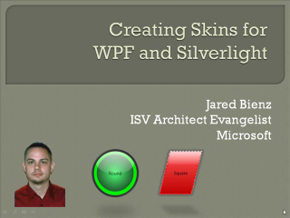 Skins for WPF and Silverlight