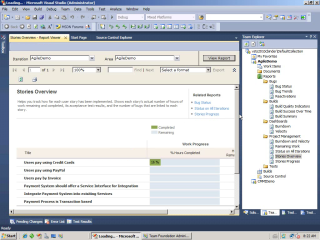 Visual Studio Team System 2010: Adhoc Reporting Excel