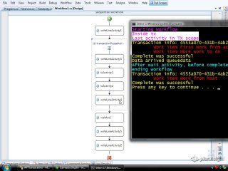 endpoint.tv Screencast - Working with Transactions in WF