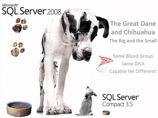 SQL Server Compact: Embedding in Desktop and Device Applications