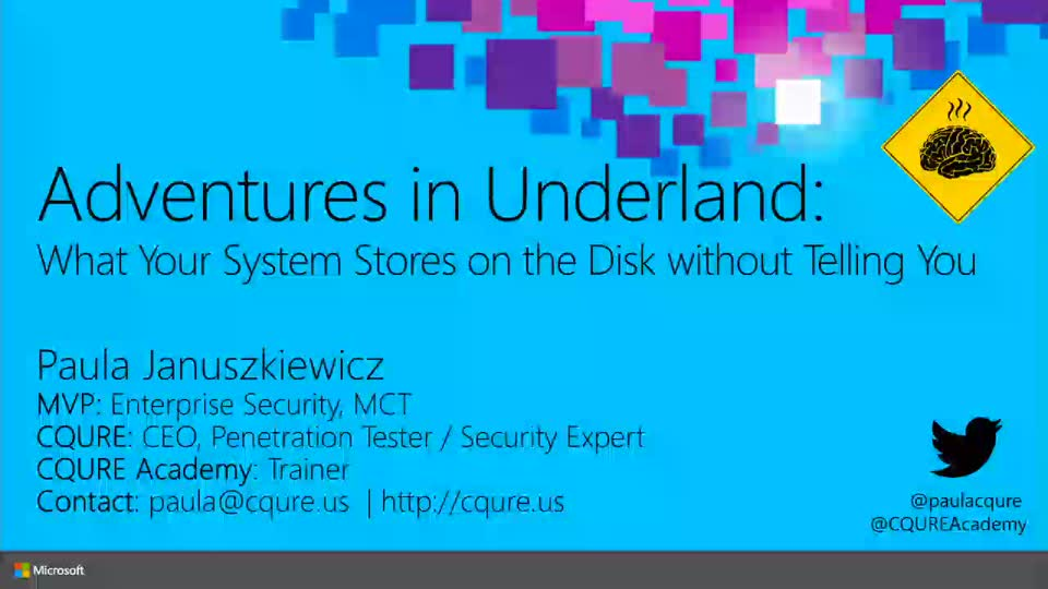 Adventures in Underland: What Your System Stores on the Disk without Telling You